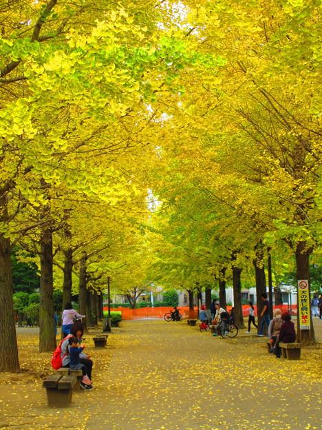 秋を満喫して・・