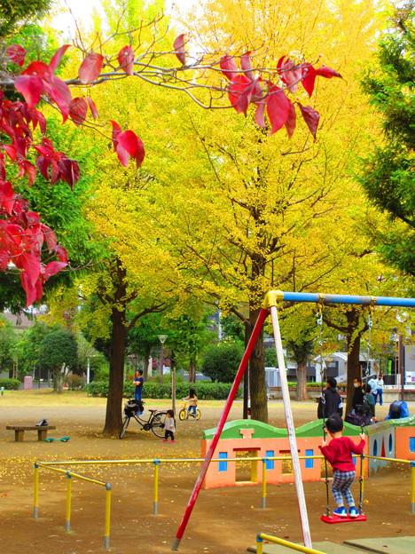 子供も秋色・・