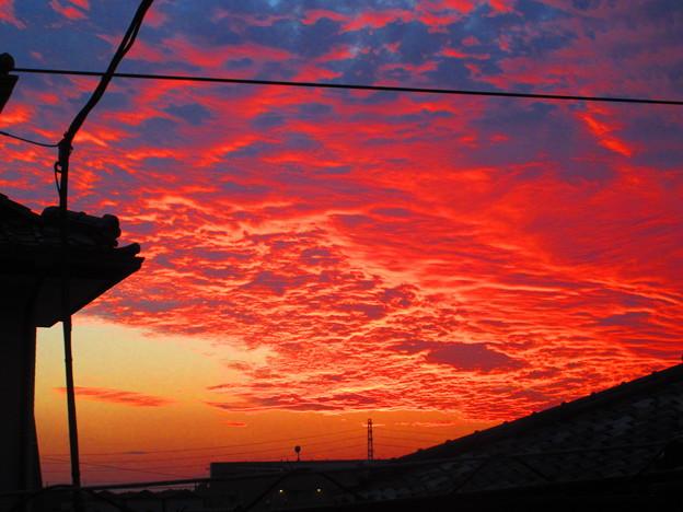 美しき夕日