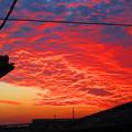 Photos: 美しき夕日