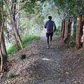 遊歩道を走る・・
