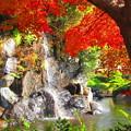 Photos: 小さな滝が・・・