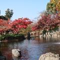 Photos: 気持ちのいい秋
