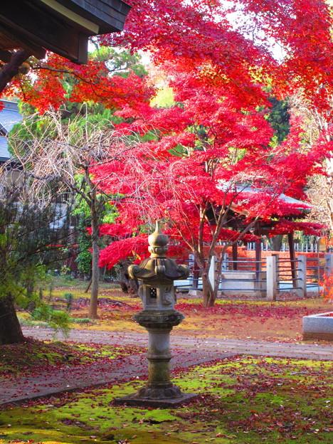 Photos: 石灯籠