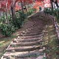 階段を昇ればそこは・・・