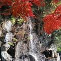 Photos: 名もなき滝を入れて・・