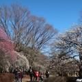 Photos: 素敵な公園ですね~