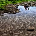 写真: 沙痕之美-奇睿