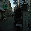 写真: SDIM0042
