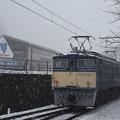 写真: 雪のEF63