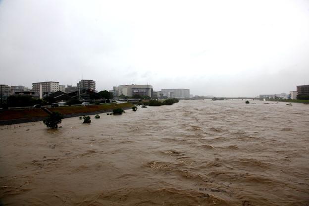 河川敷増水-1