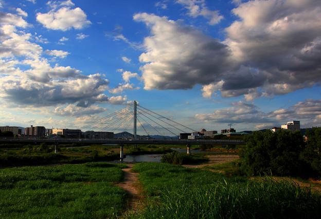 散歩道風景-1