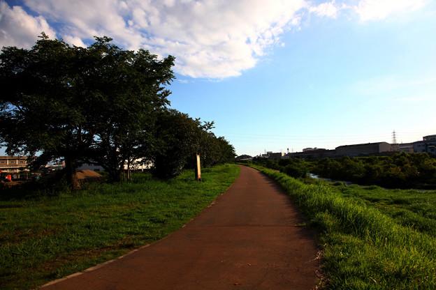 毎日の散歩道-2-1