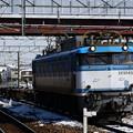 EF81 450番台