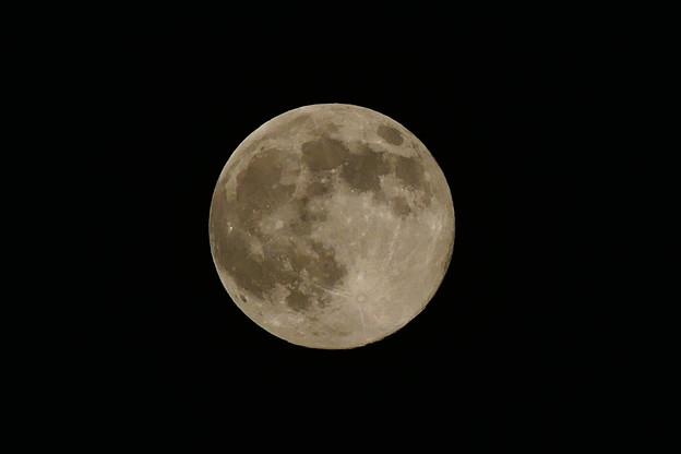 Photos: Full Moon