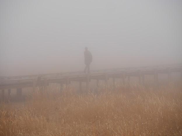 霧の中の影