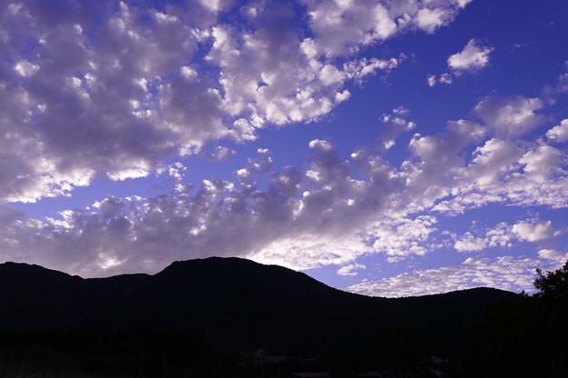 ラベンダー色の空
