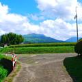 Photos: 夏の田舎道