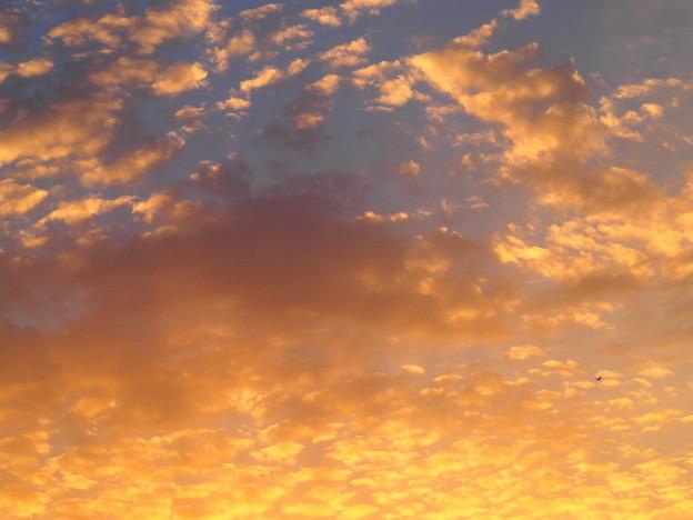 オレンジ色の雲