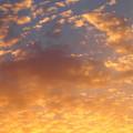 Photos: オレンジ色の雲