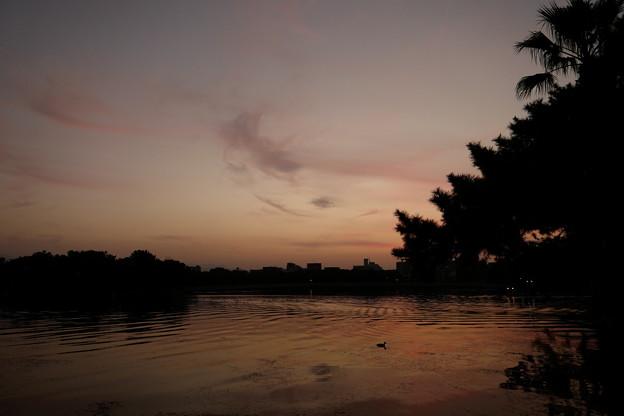 夕日が沈んだら