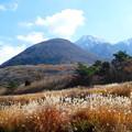Photos: 秋と冬の間