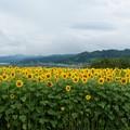 Photos: 0804002