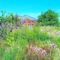 写真: カラフルなお花畑と赤レンガ