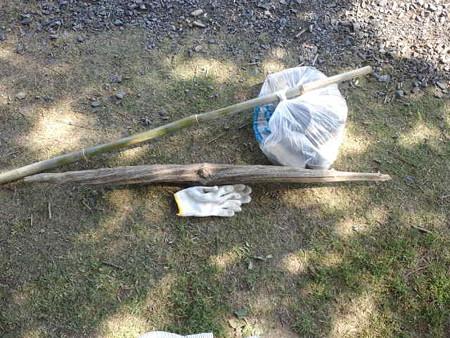 拾ってきた流木
