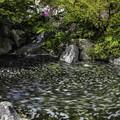 写真: 北の大滝