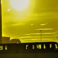 写真: 夕日の中