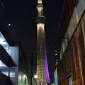 写真: タワーへの道 (1)
