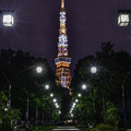 写真: タワーへの道 (2)