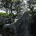 写真: 江の島にて (2)