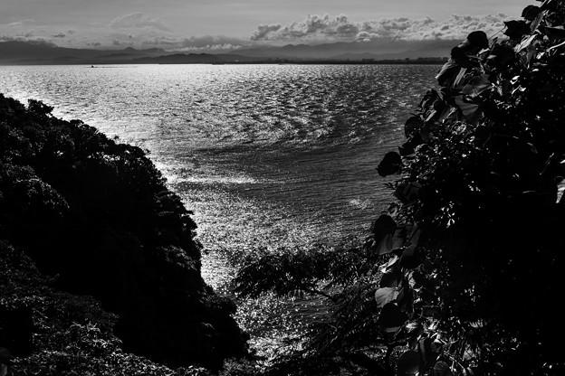 写真: 波高し