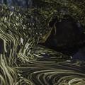 写真: 水流の舞