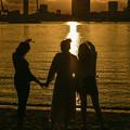 Photos: 夕陽浴びて
