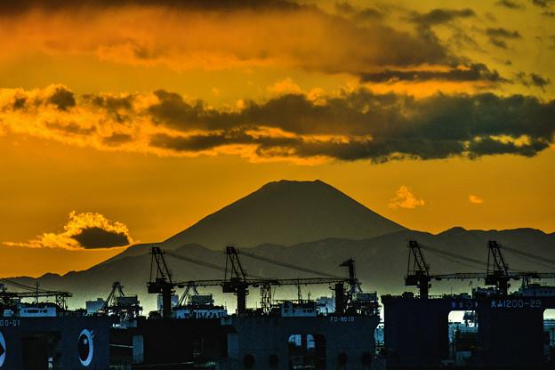 Photos: キリンと富士
