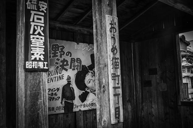 Photos: 猫町一丁目