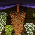 写真: 懸崖作り花壇