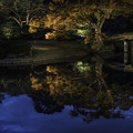 夜の六義園