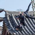 Photos: 成人の日「はしご乗り」