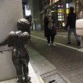Photos: 待ち伏せ