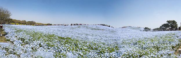 パノラマ「みはらしの丘」