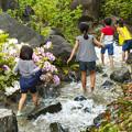 Photos: 都心のオアシス「子供の日」