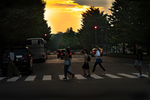 Photos: 残照