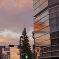Photos: 昨夕の夕焼け