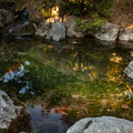 Photos: 北の大滝