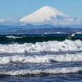 Photos: 朝の片瀬海岸