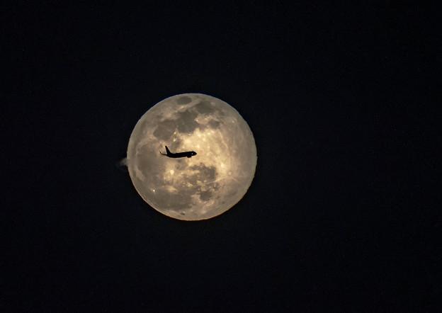 Photos: 満月の夜